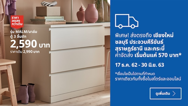 Truck delivery to Chiang Mai, Chonburi, Prachuab Kirikan, Surat Thani and Krabi from 570 THB only! 17 Dec 2019 - 30 June 2010