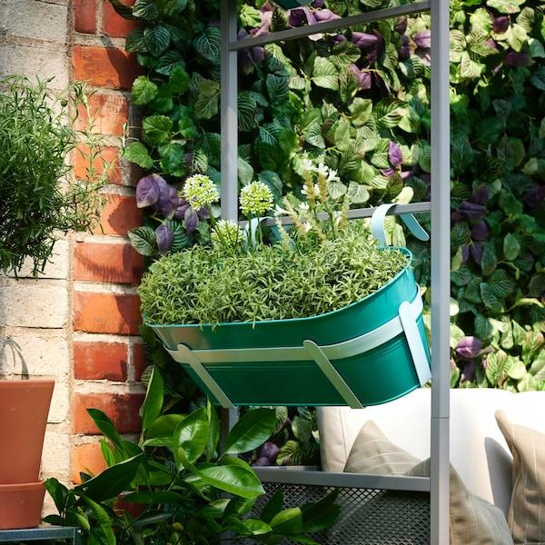 Turquoise bloembak met groene plantjes aan een rek tegen een bakstenen muur begroeid met groen.
