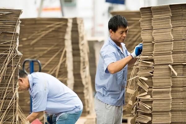 Twee werknemers die stapels kartonnen dozen bij een IKEA leverancier sorteren.