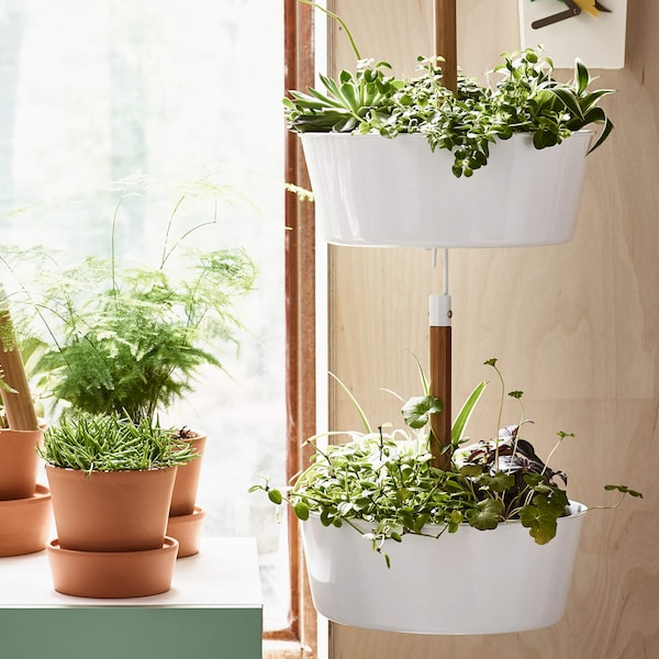 Two BITTERGURKA hanging planters filled with plants in a sunny room