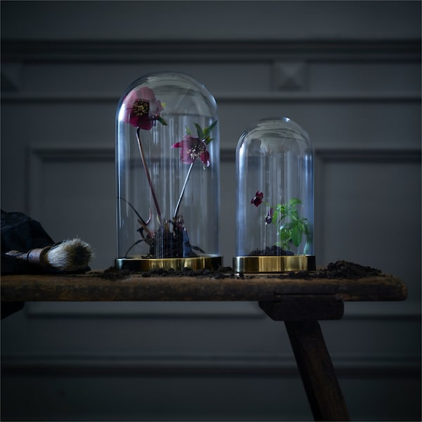 Two domed glassed with gold bases filled with flowers sitting on a bench in a dark room.