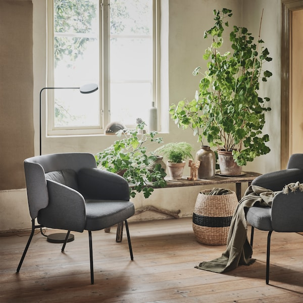 Two gray low back BINGSTA armchairs are seen in a cosy, sunny corner beside a window and a bench filled with plants.