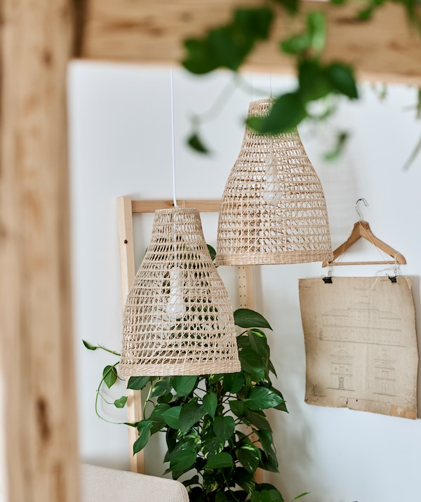 Two pendant lampshades woven in natural material hang next to a leafy green plant and blueprints displayed in a clip hanger.