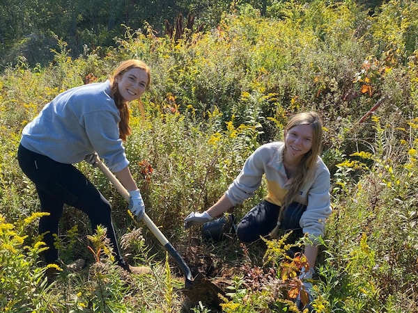 Two women in a field planting a tree