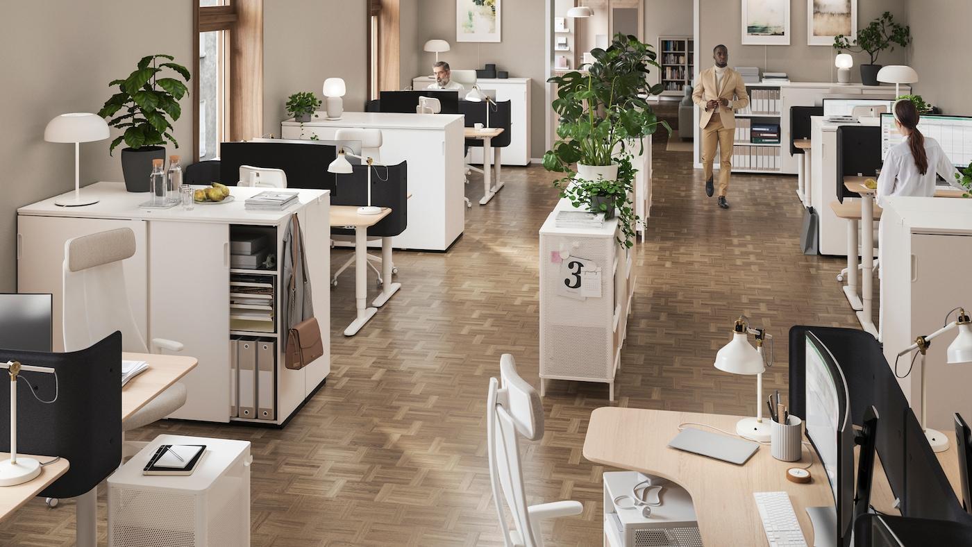 Ufficio open space con scaffali ornati da piante, al centro, e postazioni di lavoro con lampade lungo le pareti.