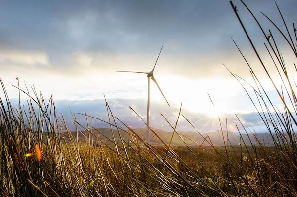 Uma única turbina eólica branca está situada num campo. O sol brilha através de nuvens cinzentas em segundo plano.