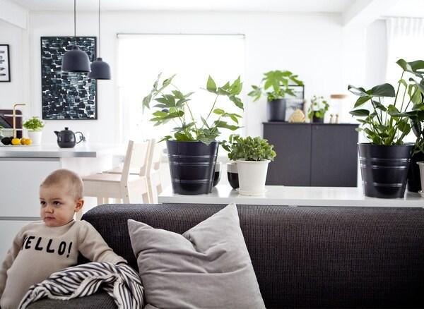Un bambino è appoggiato a un divano grigio in un soggiorno open space monocromatico – IKEA