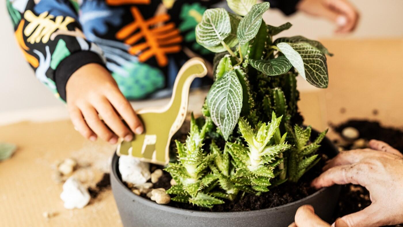 Un bambino gioca con un set il mondo dei dinosauri JÄTTELIK sopra un tavolo con piante verdi in vaso dentro casa - IKEA