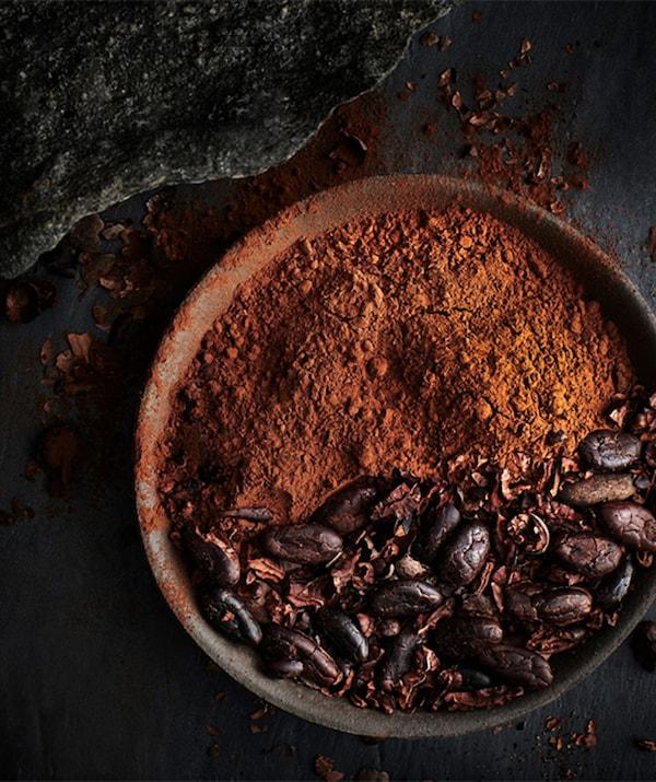 Un bol rempli de poudre de cacao et de fèves de cacao.