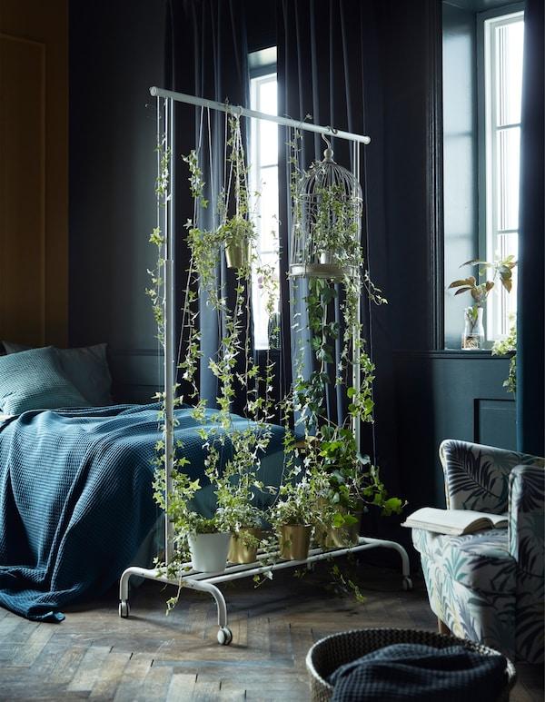 Un burro para ropa con plantas trepadoras que forman un divisor de espacios en un dormitorio.