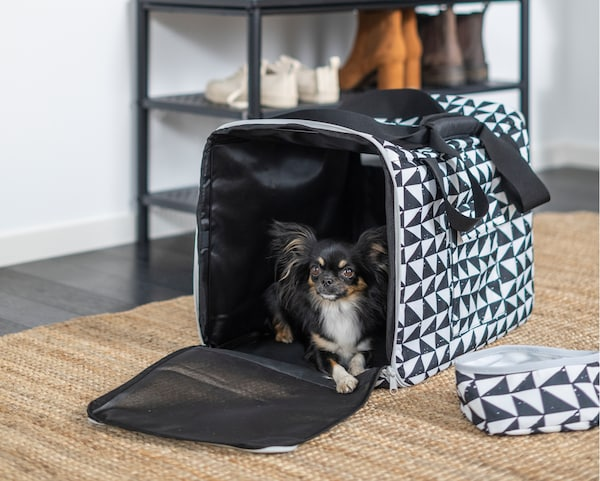 Un câine Papillon negru stă relaxat pe o geantă de călătorie LURVIG cu modele geometrice, lângă un bol pentru călătorii asortat.