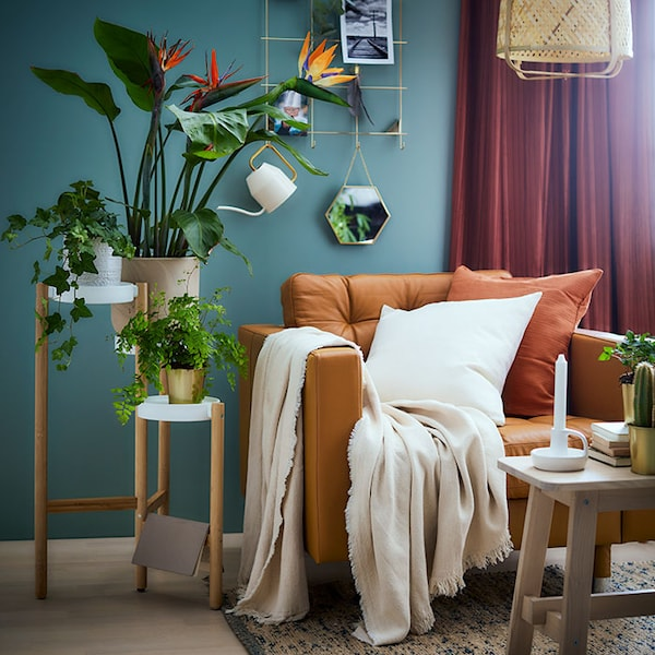 Un coin d'un salon avec un fauteuil in cuir brun MORABO et des plantes.