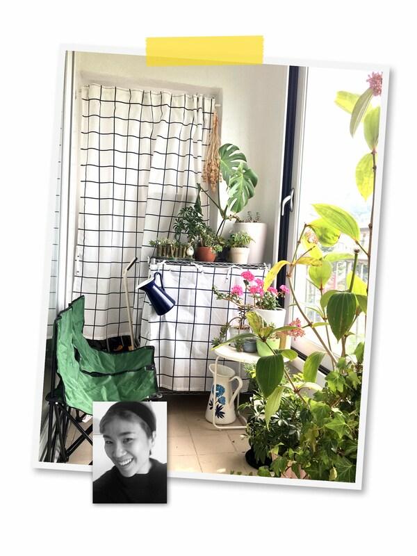 Un collage de deux images: une pièce remplie de plantes et d'étagères recouvertes de tissus à motif et le portrait d'une collaboratrice IKEA.