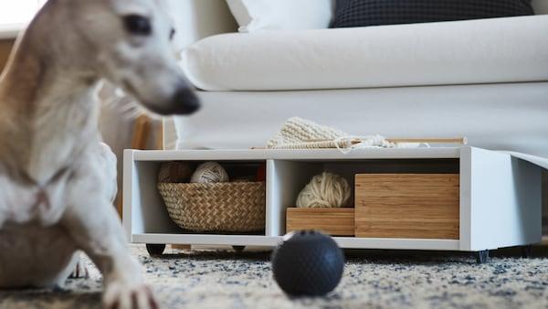 Un espace de rangement sous le lit blanc et une table de chevet à roulettes contiennent des boîtes et un panier à placer sous le canapé. Un chien qui joue avec une balle est juste à côté.