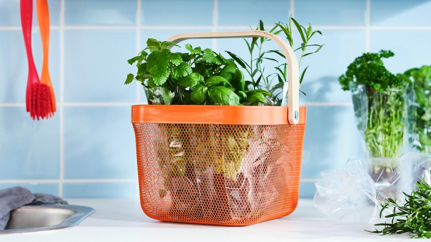 Un plan de travail avec des herbes aromatiques dans un panier en maille d'acier RISATORP orange vif avec une anse en plaqué bouleau.