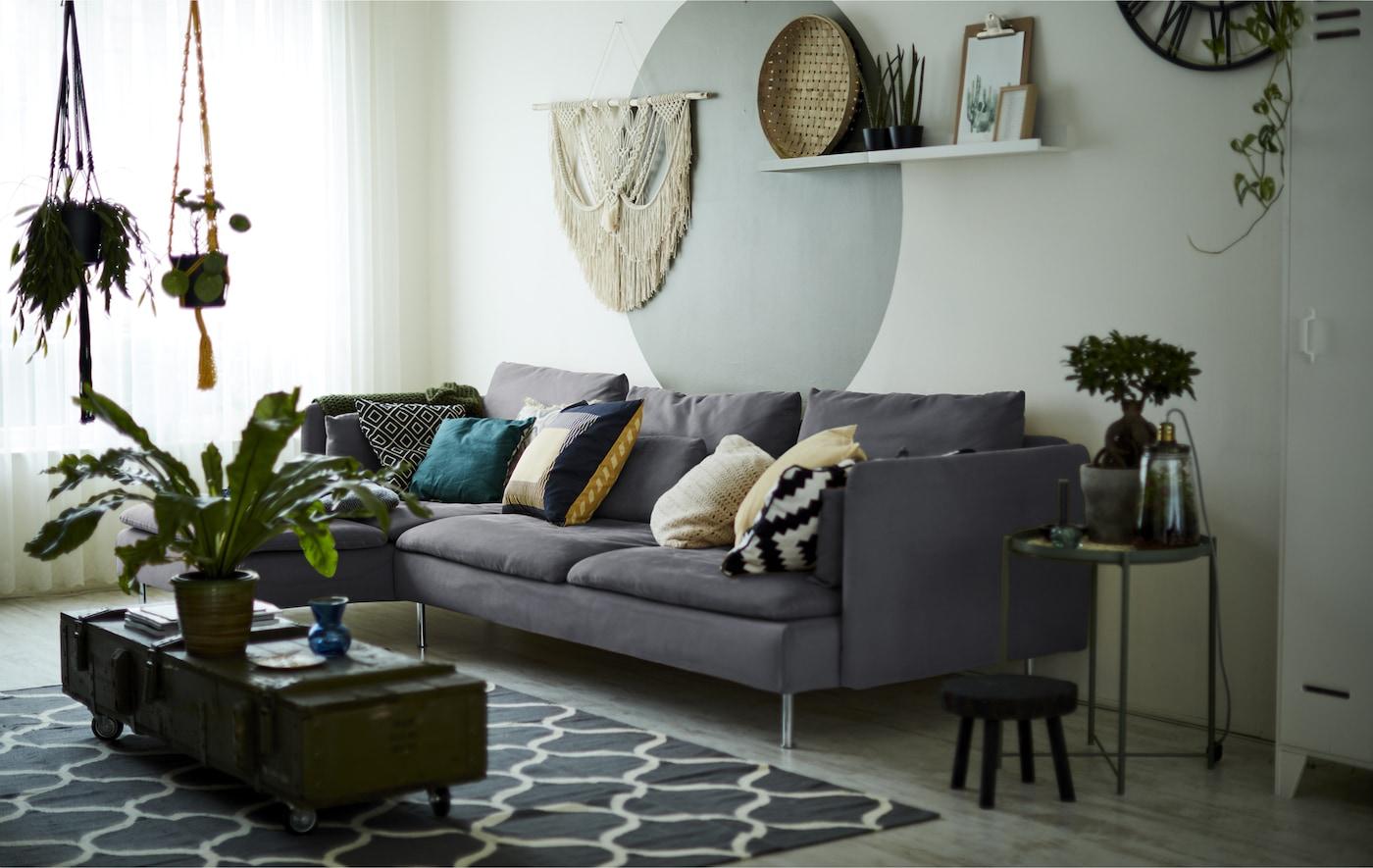 Un soggiorno con un divano grigio e piante da interno.