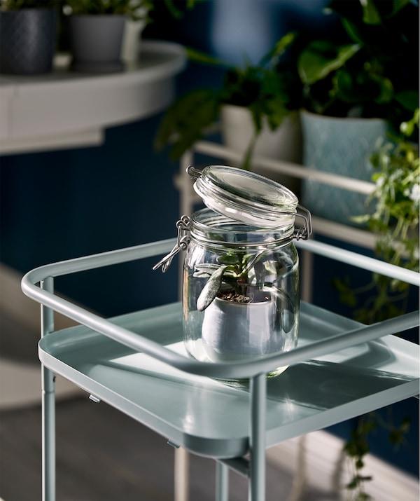 Un soporte vertical para plantas que aloja un solo recipiente de vidrio con una planta pequeña en una maceta; la tapa del bote KORKEN está ligeramente entreabierta.