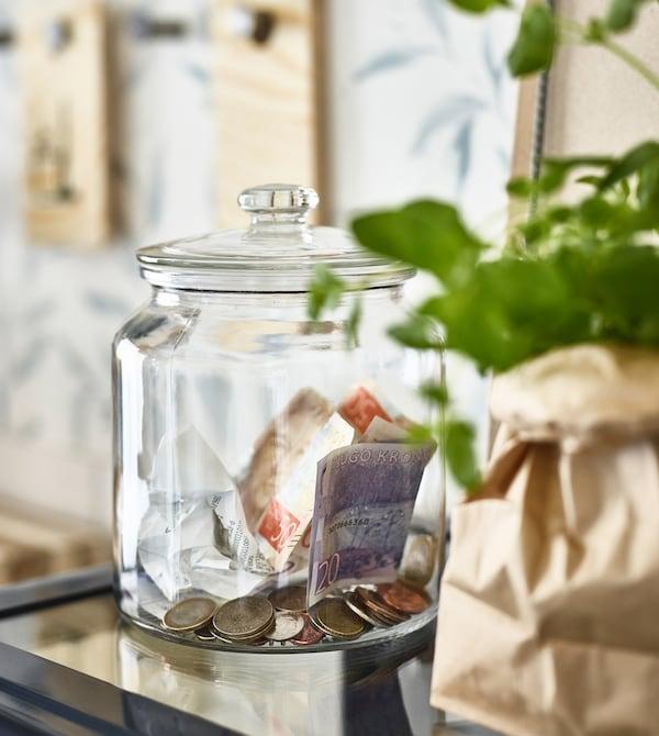 Un tarro de cristal VARDAGEN de IKEA utilizado como caja para las monedas junto a una planta en una bolsa de papel.