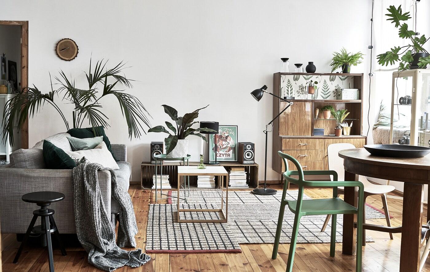 Una sala de planta oberta amb taula, cadires, plantes, un sofà i aparadors.