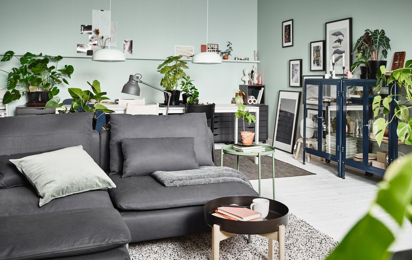 Una sala d'estar amb un sofà gris, una taula de cafè petita, unes vitrines blaves, plantes i llums.