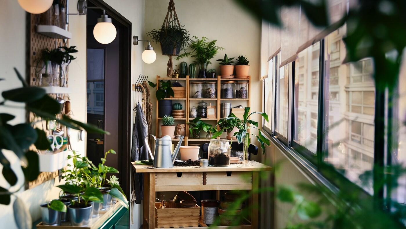 Una terraza con varios muebles y estantes de madera, que sostienen multiples maceteros con plantas. También hay plantas colgando desde el techo.
