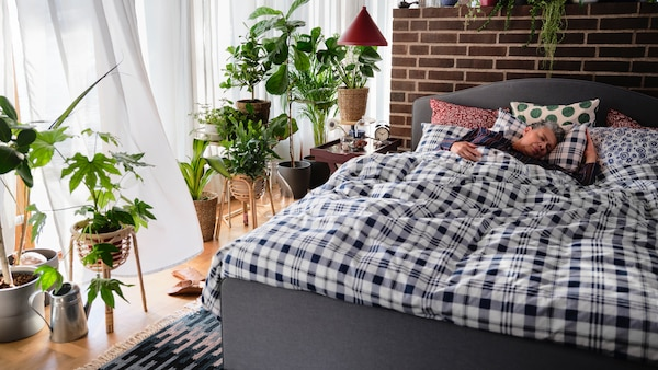Une chambre avec des plantes, une lampe rouge, un cadre de lit matelassé HAUGA gris, une housse de couette bleue et blanche, et une femme endormie.