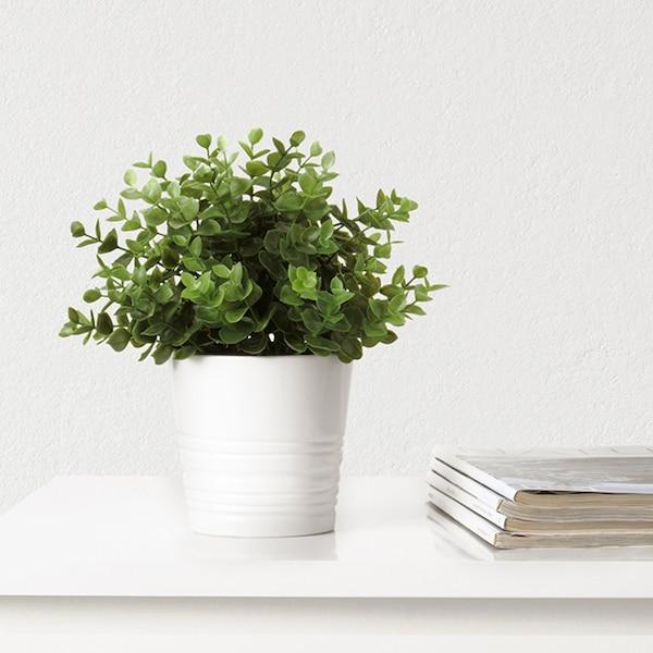 Une petite plante artificielle dans un pot blanc est posée sur un comptoir blanc. Des revues sont empilées à côté.