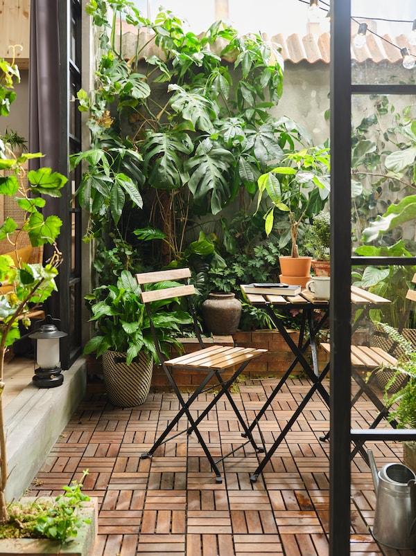 Une terrasse avec caillebotis en bois RUNNEN, des plantes de différentes tailles couvrant les murs et des meubles d'extérieur en acacia TÄRNÖ.