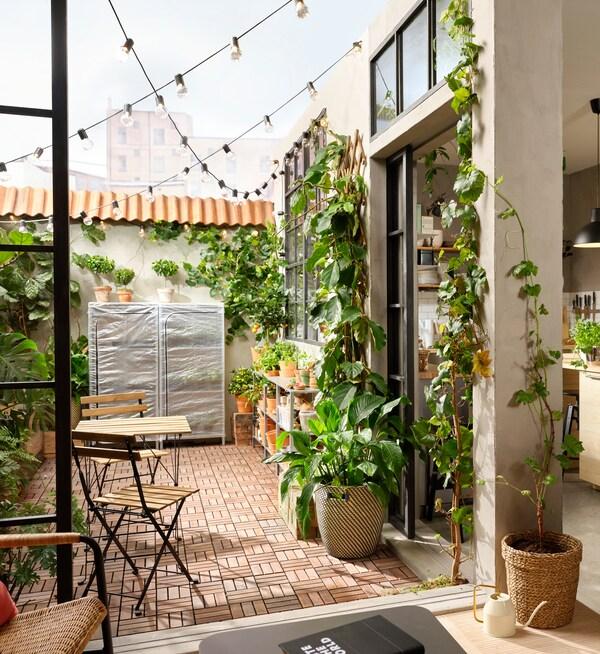 Une terrasse couverte de caillebotis en bois RUNNEN et de nombreuses plantes de tailles différentes dans des vases le long des murs.
