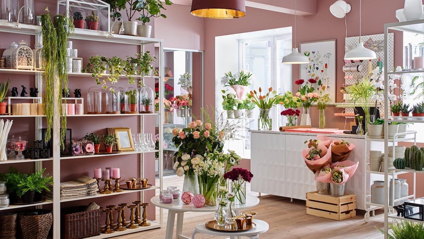 Vaalenapunaseinäinen kukkakauppa, joka kalustettu valkoisilla FJÄLKINGE-seinähyllyillä, joissa esillä kasveja ja maljakoita.