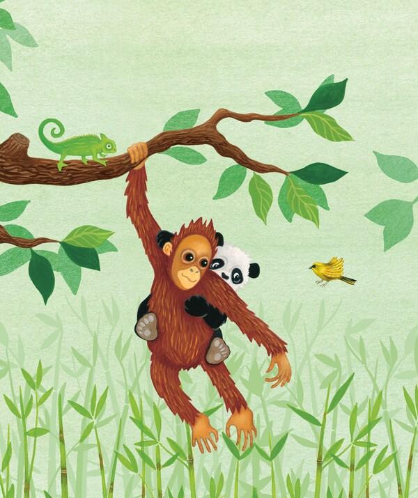 Värikäs lastenkirjan kuva orangista ja pandasta viidakossa. Viidakkoaiheinen kuvakirja Oranki, joka pelkäsi pimeää.