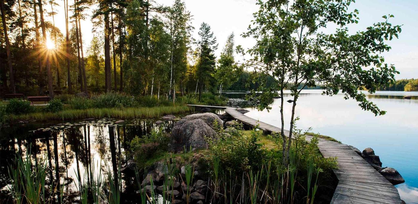 Växjö ist eine der grünsten Städte Europas und ist umgeben von Naturreservaten und einer wunderschönen Seenlandschaft.
