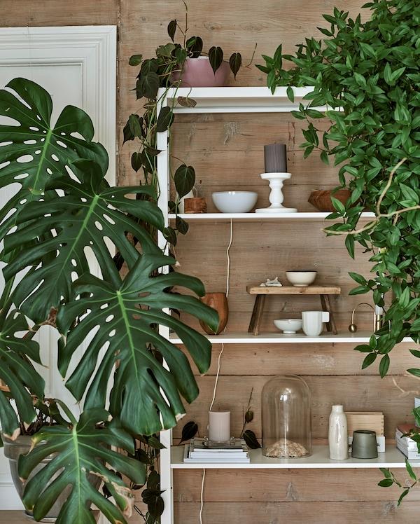 Valkoinen metallihylly, jolla on yhdistelmä kasveja, kellorasioita, keramiikkaa ja veistettyjä puukappaleita.