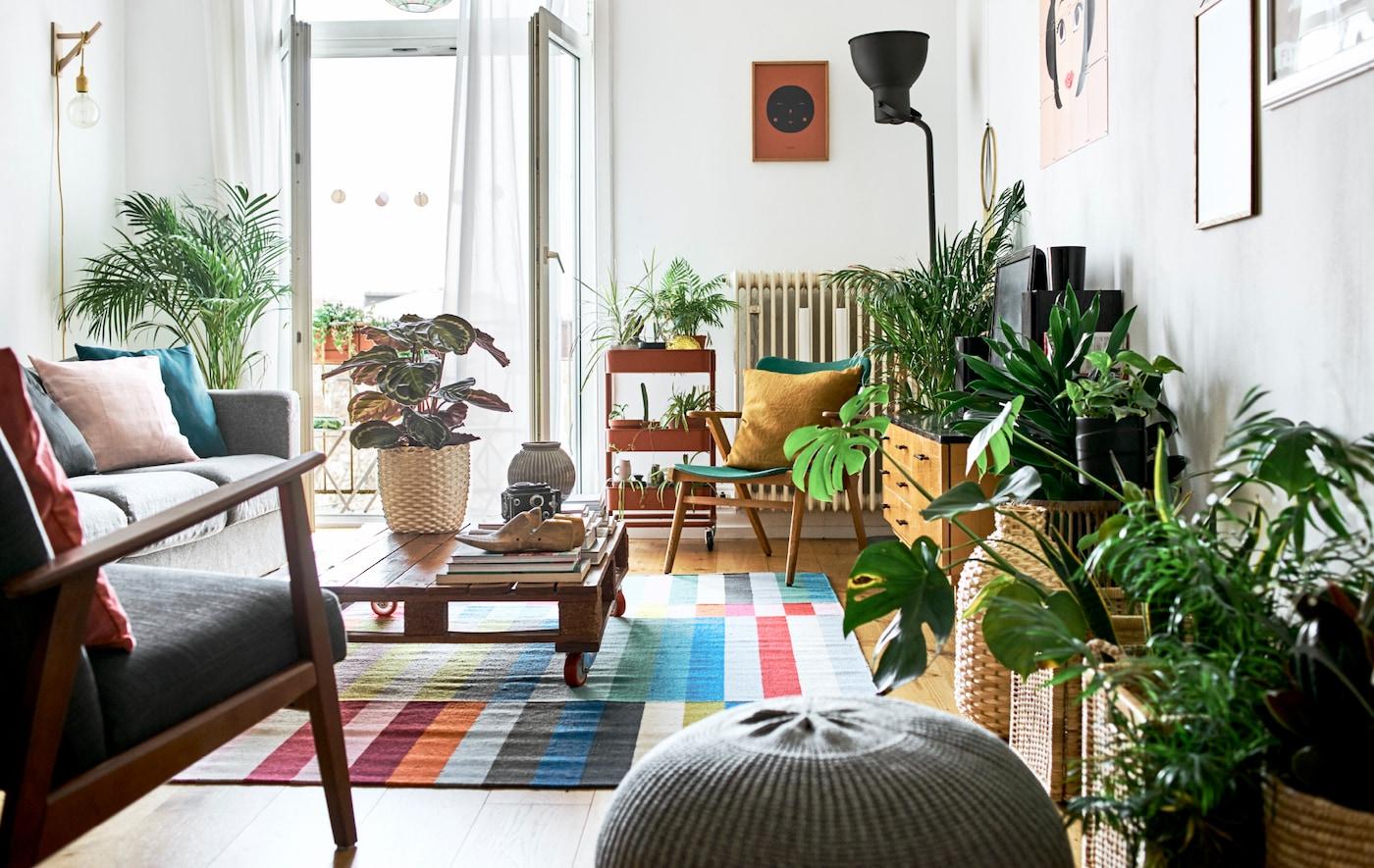 Vardagsrum med öppna franska balkongdörrar, en mix av olika sittmöbler, ett bord gjort av en lastpall samt en färgstark matta och krukväxter.