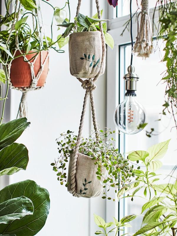 Varias plantas crean un ambiente de jungla urbana en una ventana, donde se muestran macetas de yute artesanales con detalles bordados.
