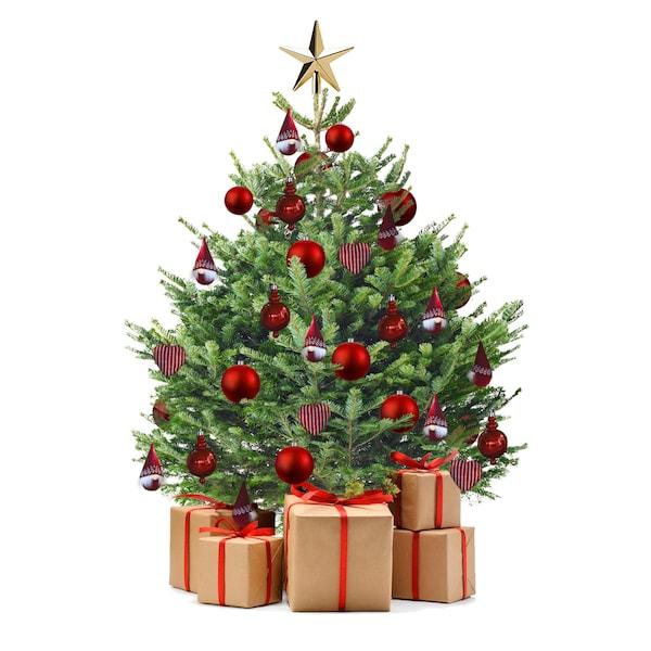 Vianočné stromčeky v IKEA.