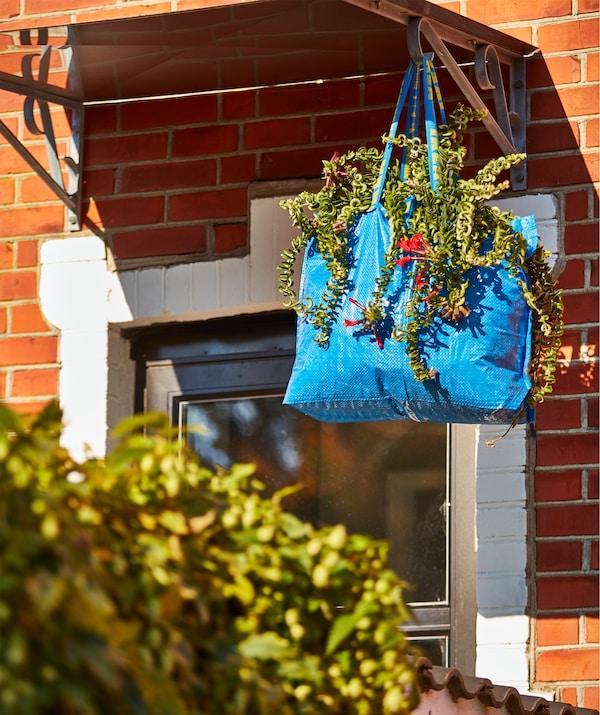 Vodootporna, plava FRAKTA ručna torba kao vellika viseća vaza za biljku.