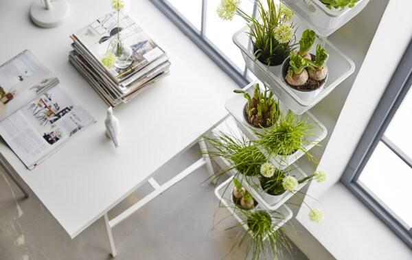 Vous rêvez d'un potager dans votre appartement? Voici comment maximiser l'espace.