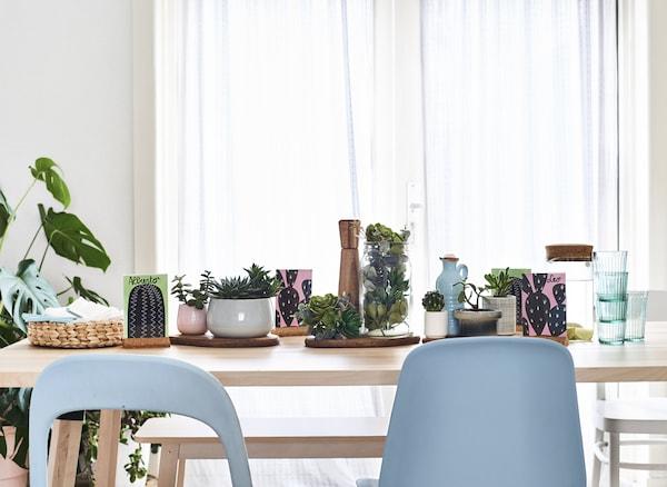 Sukkulenten Tischdeko Ideen Ikea
