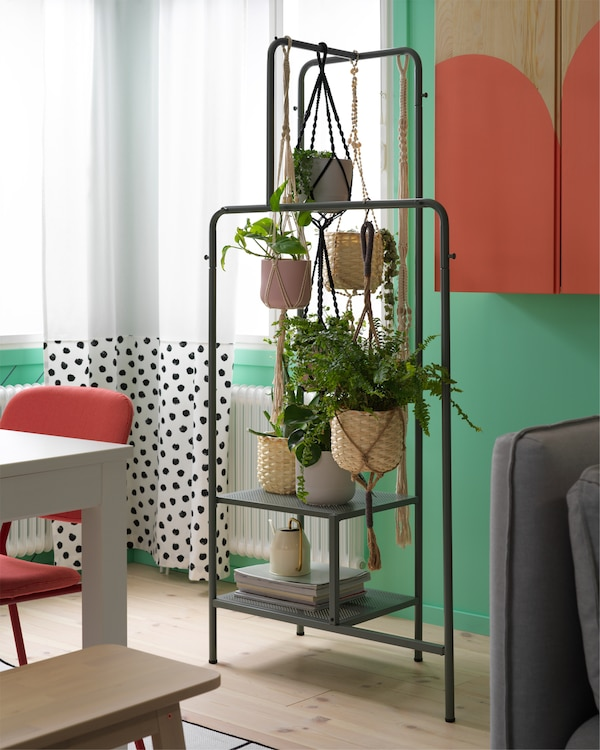 White curtains with black dots and a clothes rack in grey-green where many green plants hang in plant pots.
