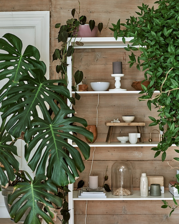 White metal shelving unit with a mixed display of plants, bell jars, ceramics and carved wood pieces.