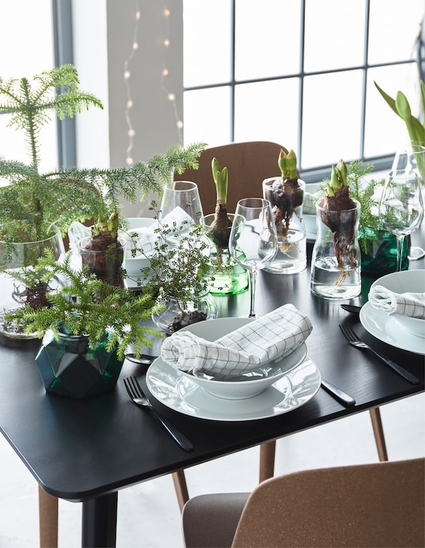 Why not decorate the dinner table with flower bulbs in different glass vases for the holidays? IKEA has a modern selection of clear glass vases, such as TIDVATTEN and BERÄKNA.