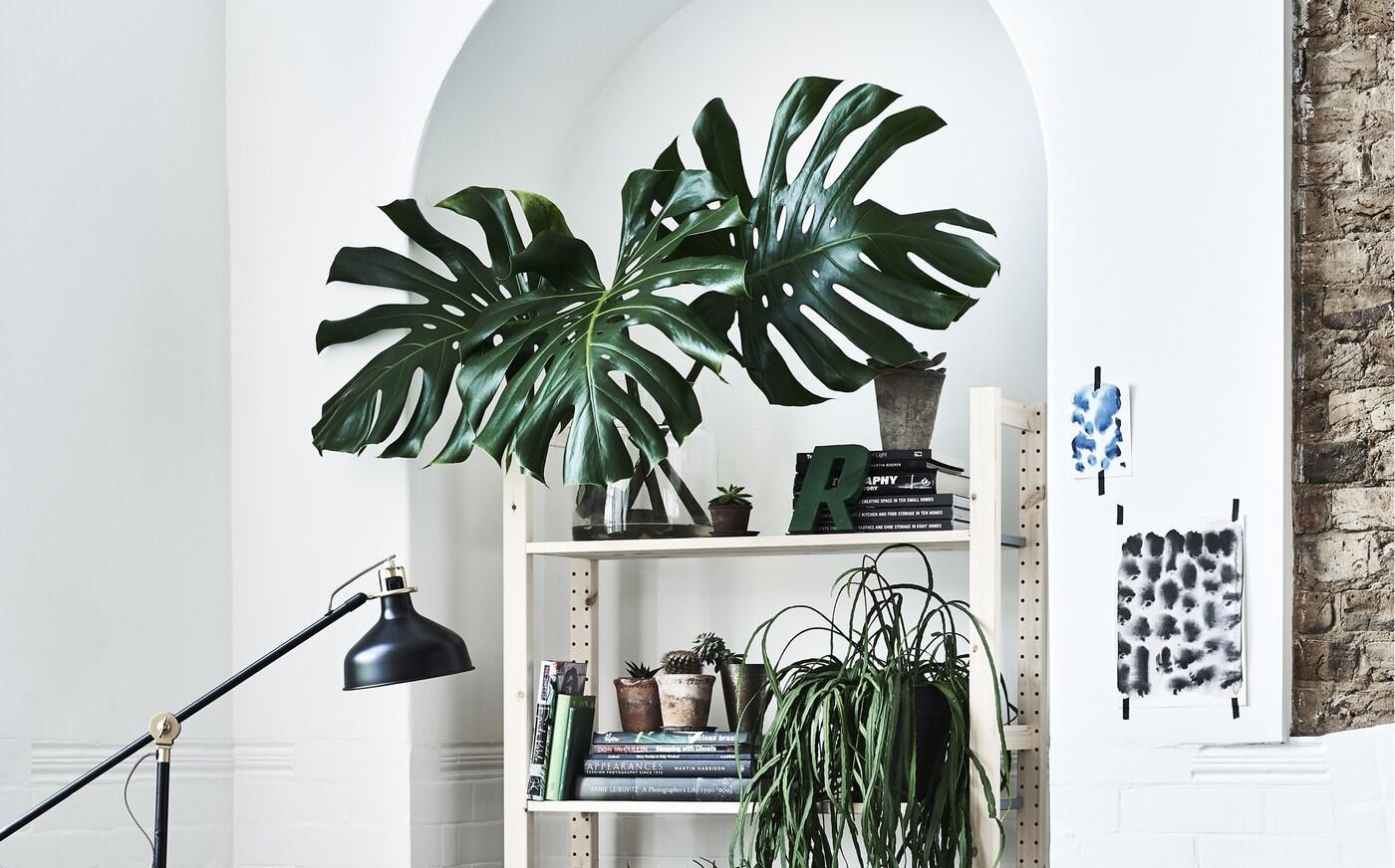 Witte muur met planken en kunstplanten
