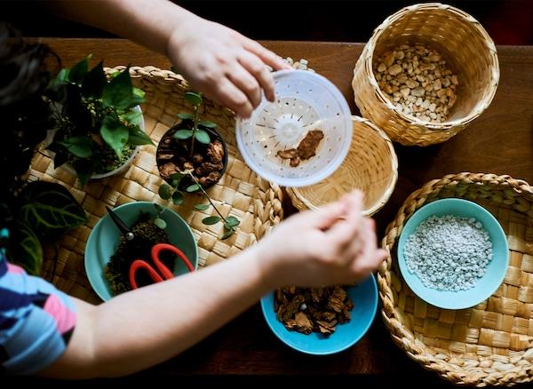 يدا امرأة تضع لحاء في إناء على طاولة مغطاة بمستلزمات الزراعة.