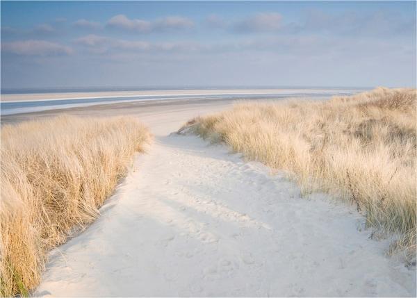 zee en strand posters