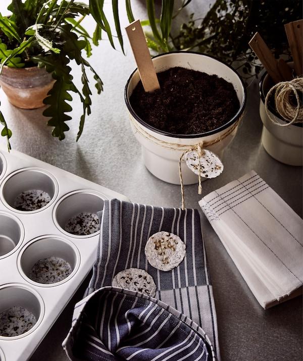 Zelene biljke, domaći rasadnik u modli za mafine i bež pokloni u obliku saksije, s domaćim semenjem zavezanim oko njih.