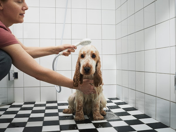 Žena sprchující psa v koupelně.