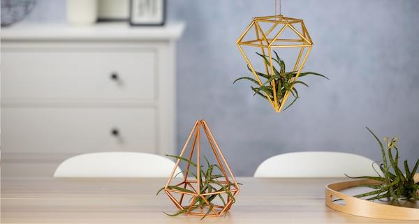 Zwei DIY Himmelis in Gold mit kleinen Pflanzen als Dekoration.