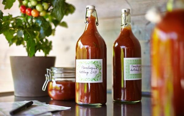 Zwei Flaschen und ein Glas mit selbstgemachtem Ketchup und eine Tomatenpflanze stehen auf einer Küchenarbeitsplatte.