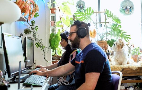 زوجان يلعبان على كمبيوتر في مساحة عمل برفوف مفتوحة، وعرض نباتات وكلب.